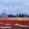 Cranberry Field